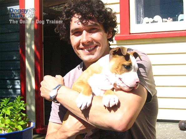 Onlinedogtrainer photo 1